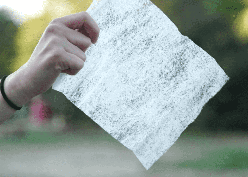 Dryer Sheet in a hand