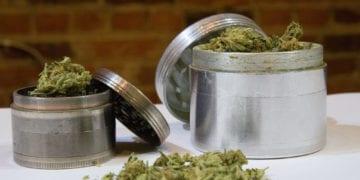 best weed grinders featured image
