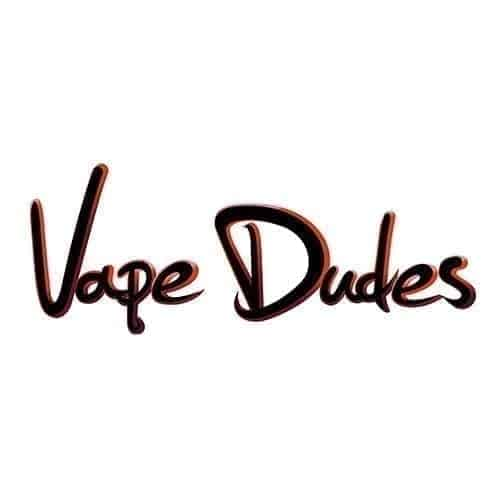 vape dudes logo image
