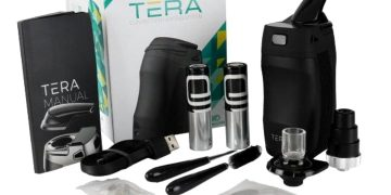 Boundless Tera featured image
