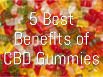 5 Best Benefits of CBD Gummies-Max-Quality image