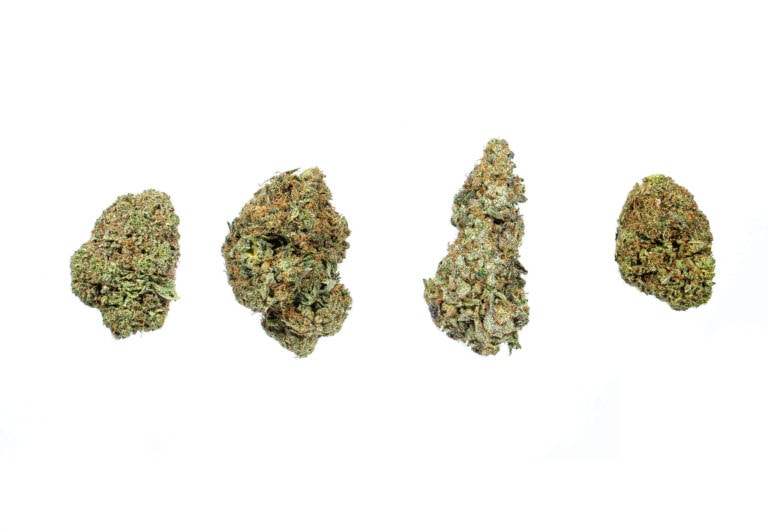 Economical Buds image